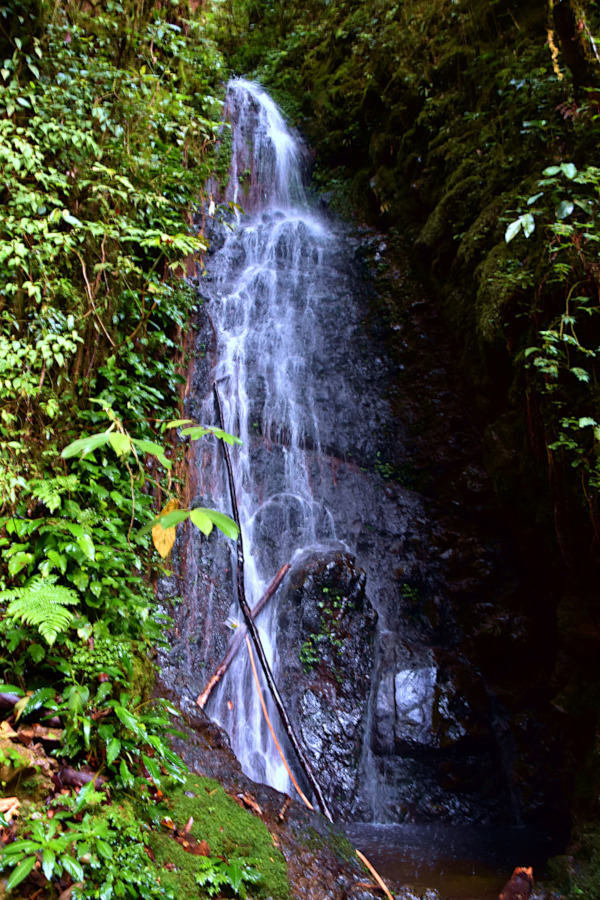 Carson waterfall