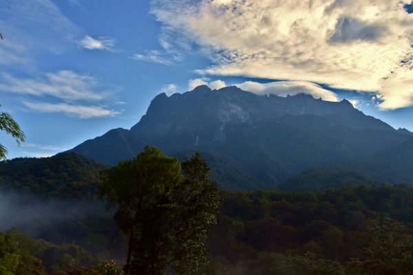 The view of Mount Kinabalu from the main office.
