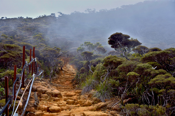 The trekking terrain towards Laban Rata.