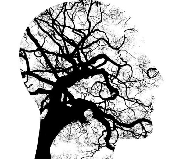 A silhouette of a human head with a tree as background.