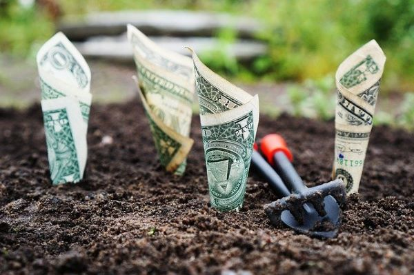 A few bank notes, rolled up in cone shapes and inserted in soil. A small shovel laid at the side. Indicating a diversified portfolio that enriches retirement years.