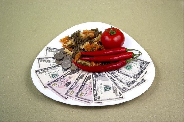 A few bank notes and coins on a ceramic plate placed together with an apple, some pasta and a few red chillis. To show putting away for retirement.