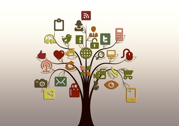 Consumers' data online are connected like fruits on a tree.