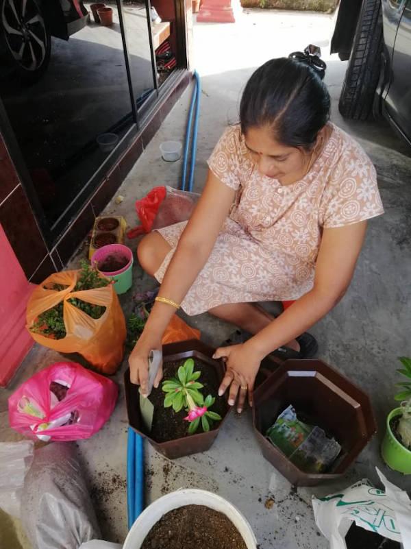 My mom planting new flowers