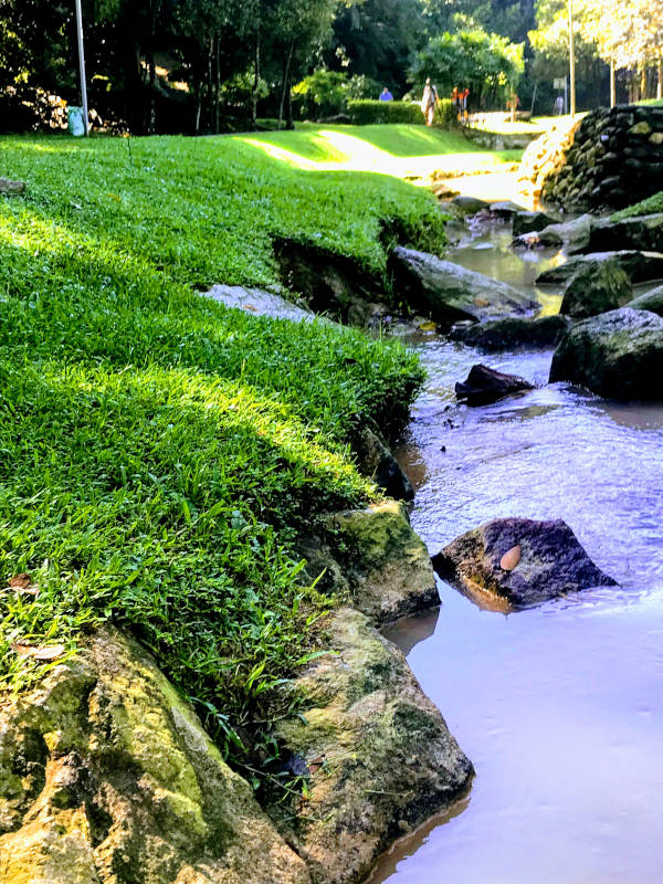 The cool stream on a sunny day.