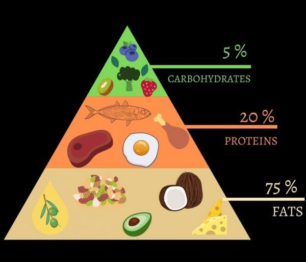 Composition of the trending Ketogenic Diet; where fats outweigh the carbohyrates and proteins.
