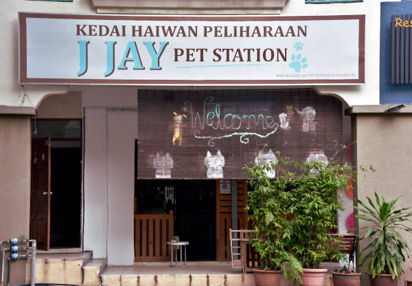 exterior of Ms Jay, J Jay pet store