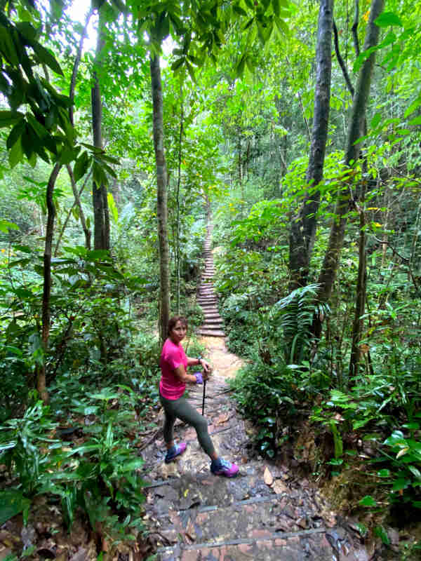 A hike up Cardiac Hill in Taman Rimba Bukit Kerinchi.