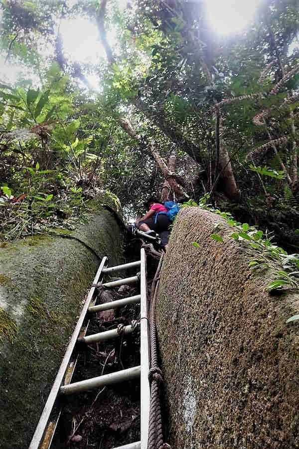Aluminium ladders were placed between the boulders to help climber on their hike up to Gunung Ledang