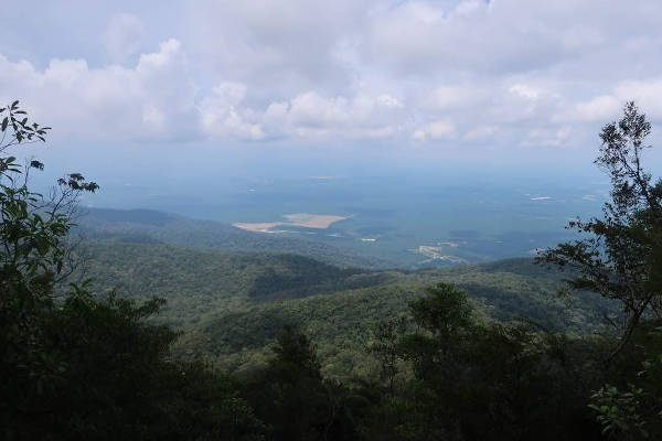 A panoramic view from the near-speak of Gunung Ledang.