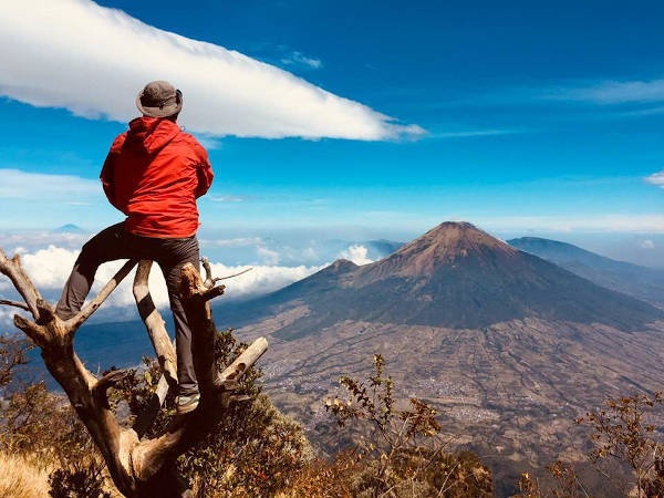 The reward of a hike - looking across to Gunung Sumbing, Indonesia.