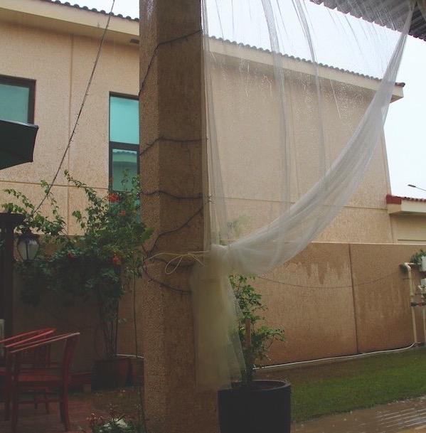 A photo of the rainy weather shown through Atiqah's backyard.