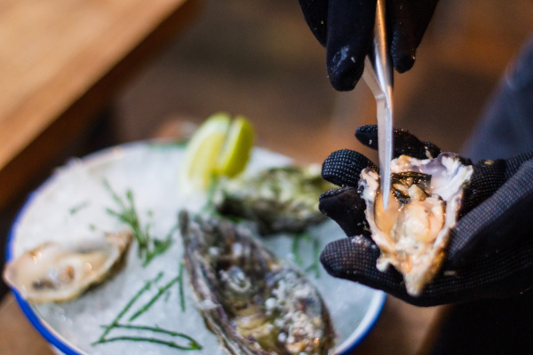 Oyster shells have more contributions to our world than just our appetite