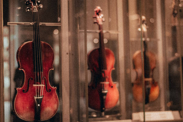 Three violins on display, stored in transparent cases.